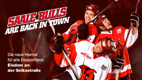 Bulls are back in town!